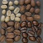 Лучшие сорта кофе