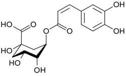 Хлорогеновые кислоты