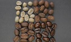 Лучшие сорта кофе. Какой сорт кофе лучше. Рейтинг
