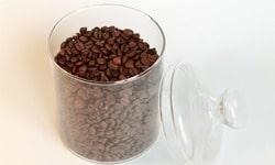 Сорт кофе робуста - второй по популярности сорт кофе в мире