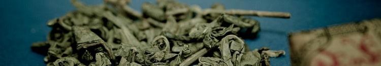 Зелёный чай: польза и вред для здоровья