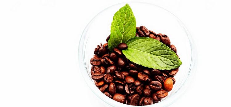 Рецепт мятного мокко