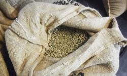 Кофе Латинской Америки