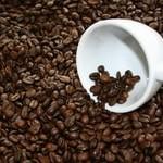 Зерновой кофе. Виды. География. Обжарка