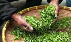 Органический чай