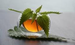 Витаминный чай. Рецепты витаминных видов чая.