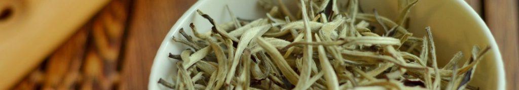 Белый чай. Полезные свойства и способ приготовления